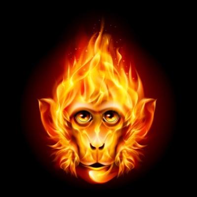 firemonkey-1