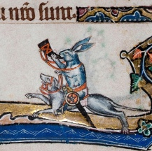 Greyhounds are obviously the steed of choice for bunnies who hunt.