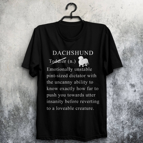 daschie-3