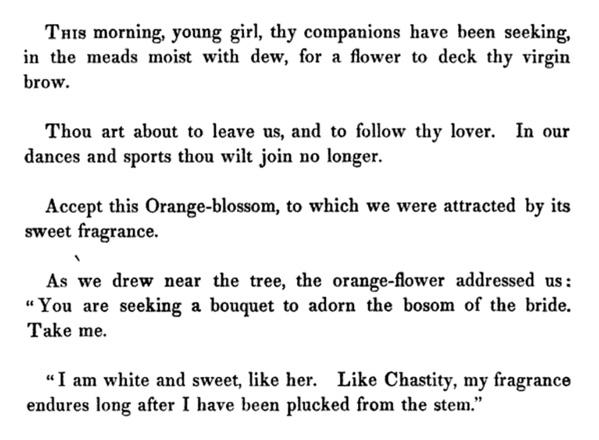 orange-flower-3