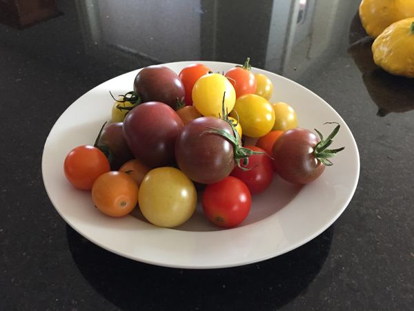 tomato-tomatoe.jpg