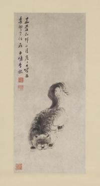 chinese-cat